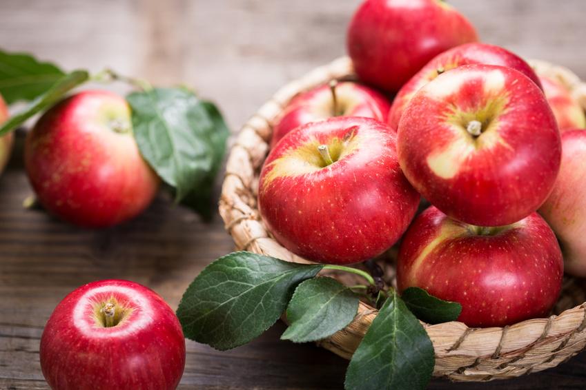 """Rund und gesund: """"Tag des Apfels"""" im WELLNEUSS"""