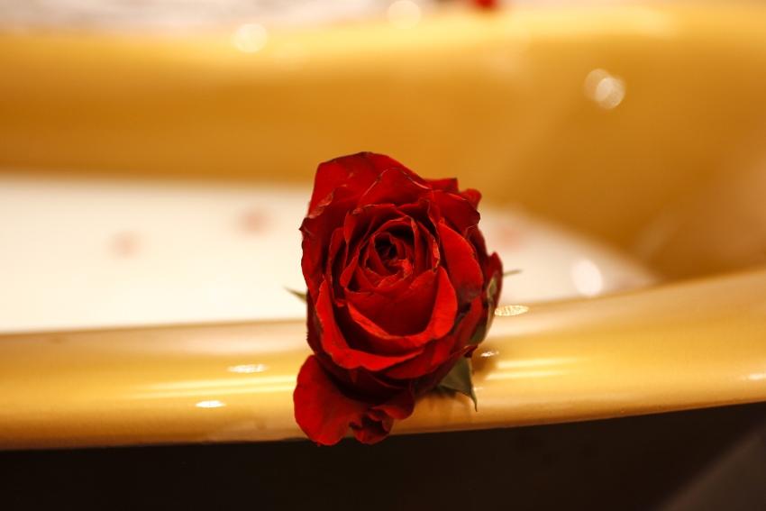 Valentinstag – rundum genießen